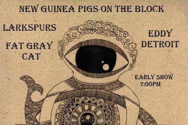 Fat Gray Cat / Eddy Detroit / Larkspurs / New Guinea Pigs on the Block