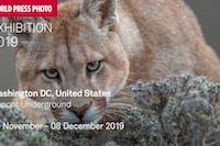 World Press Photo Exhibition 2019 - (November 9th)