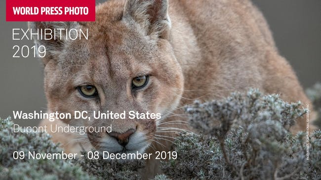 World Press Photo Exhibition 2019 - (November 18th)