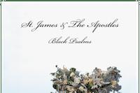 St.James & The Apostles / PJ Brown & Her Resistance / Michael Simons