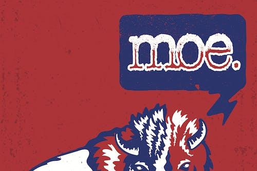 3 Day Pass- Moe.
