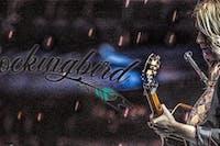Mockingbird with Zak Webb