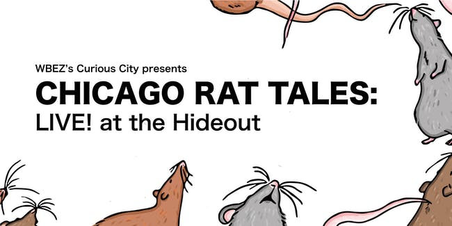 Chicago Rat Tales: LIVE!  at the Hideout