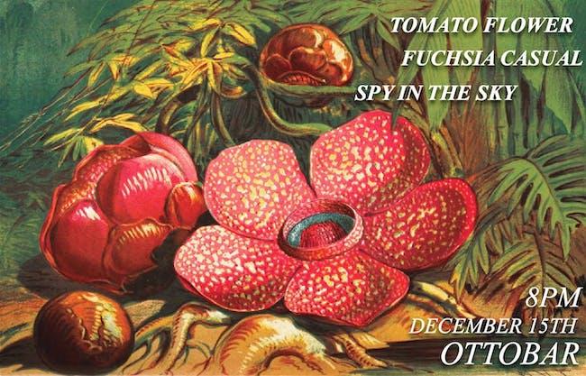Tomato Flower, Spy in the Sky, Fuscia Casual