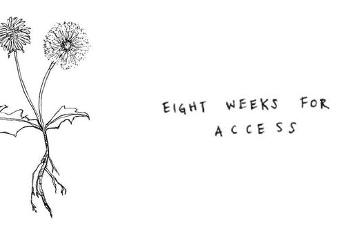 Eight Weeks for Access: The Winter Blowout
