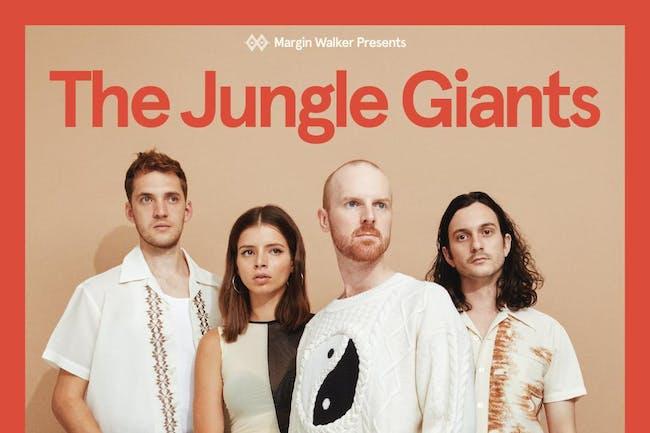 The Jungle Giants • Little Image