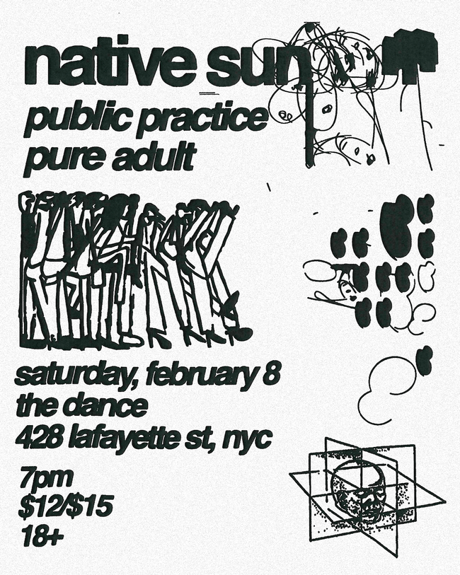 Native Sun with Public Practice, Pure Adult, Curley (FONTAINES DC) DJ Set