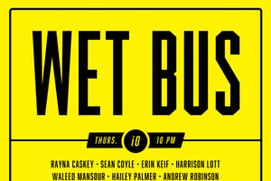 Wet Bus, The Harold Team Daffodil
