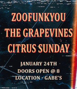 ZOOFUNKYOU, The Grapevines and Citrus Sunday