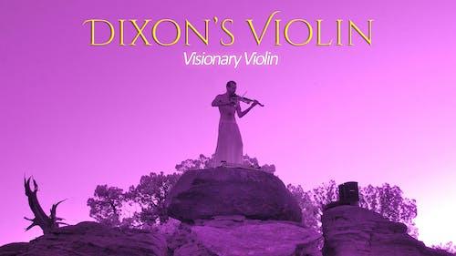 Dixon's Violin • Abby Vice