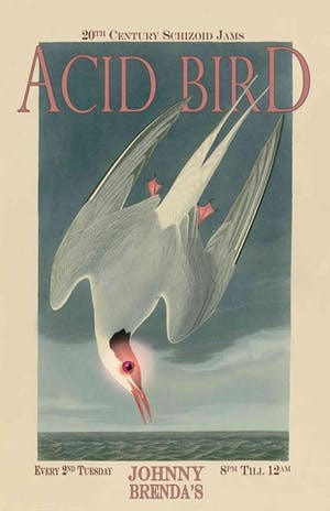 Acid Bird: 20th Century Schizoid Jams with DJ Rory Connell and friends