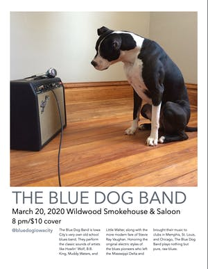 The Blue Dog Band