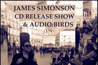 James Simonson's Cd Release Party with Audio Birds and special guests
