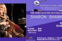 Sharon Shannon The Irish Folk Sensation