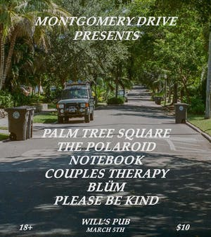 Palm Tree Square, The Polaroid Notebook, Couples Therapy, Blüm, and Please