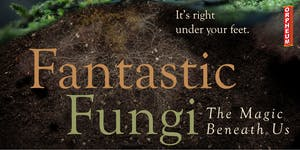 ***POSTPONED*** Fantastic Fungi