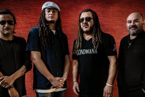 Gondwana's Lions Tour 2020