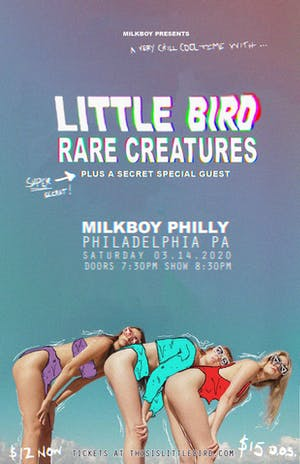 Little Bird + Rare Creatures