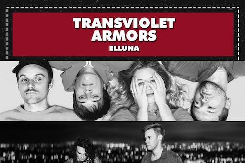 TRANSVIOLET / ARMORS