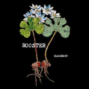 Rooster (Album Release Show)