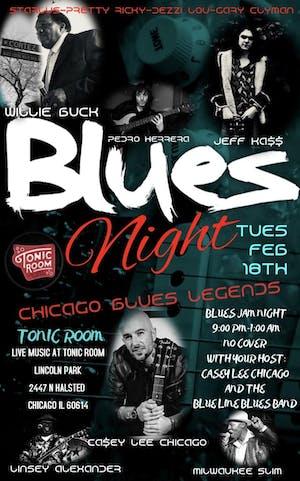 Casey Lee Chicago Blues Jam