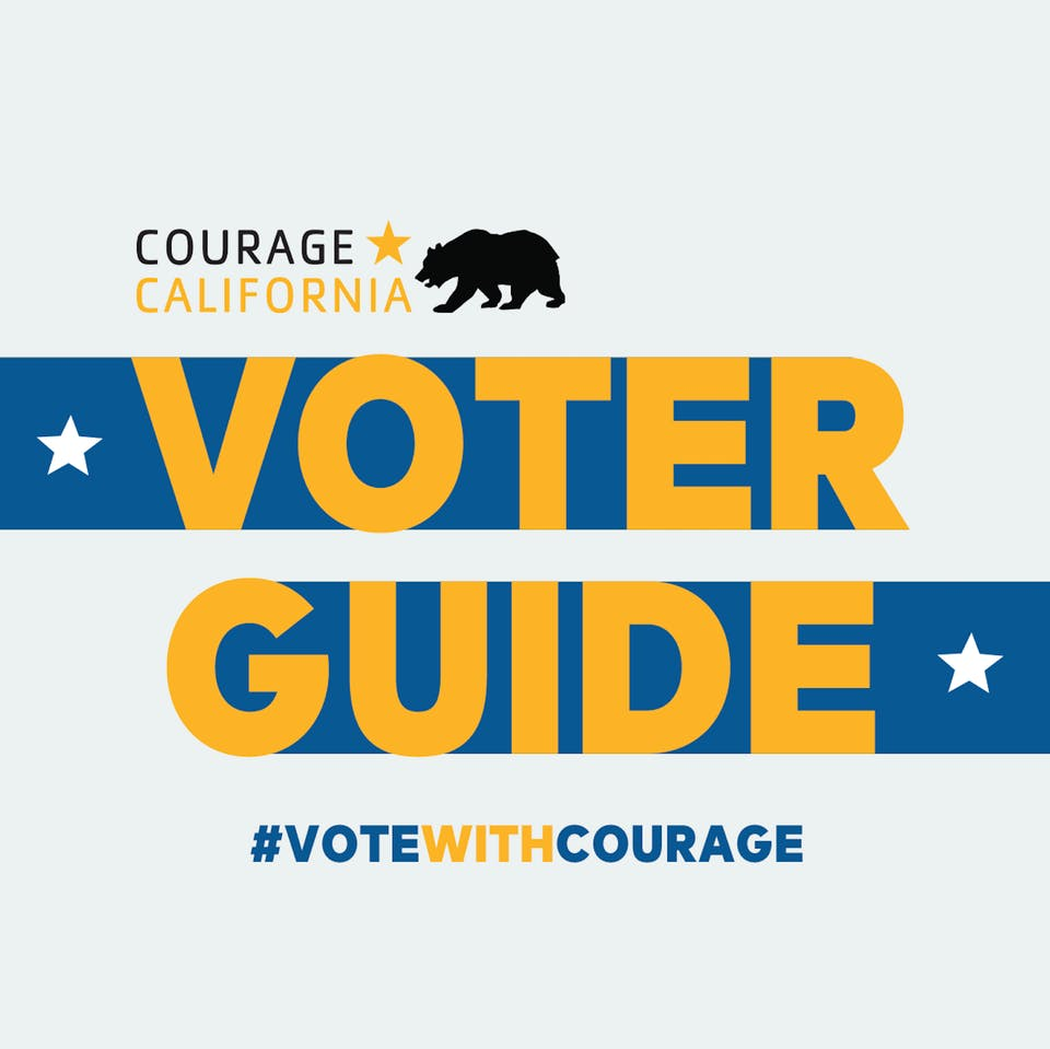 Who the hell am I voting for? A guide to voting with Courage in California!