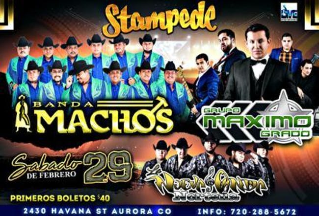 Grupo Maximo Grado y Banda Machos