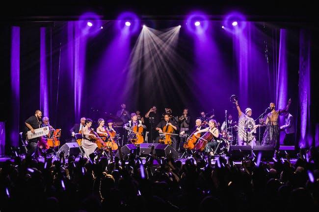 Portland Cello Project: Purple Reign Record Release Party