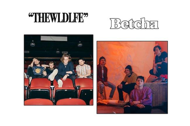 The WLDLFE / Betcha
