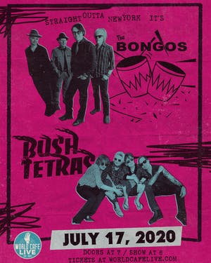 The Bongos / Bush Tetras