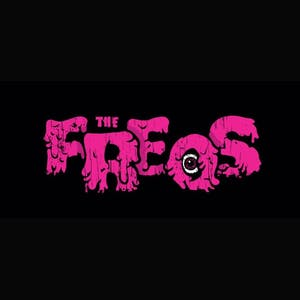 The Freqs Record Release with Rude and Parrot