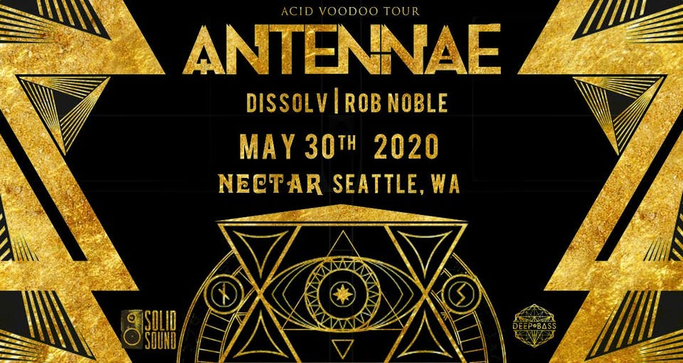 AN-TEN-NAE with Dissolv, Rob Noble