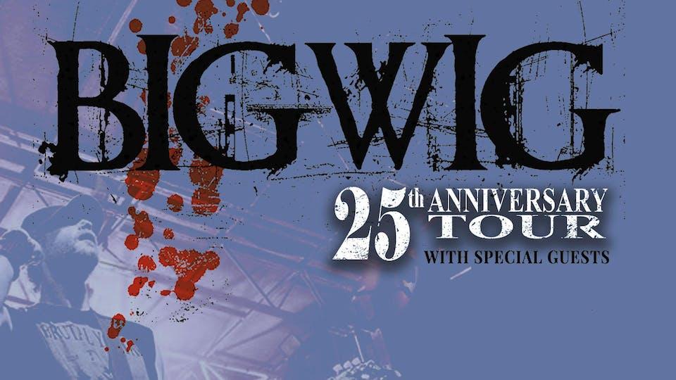 BigWig  - 25th Anniversary Tour