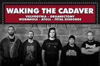 WAKING THE CADAVER