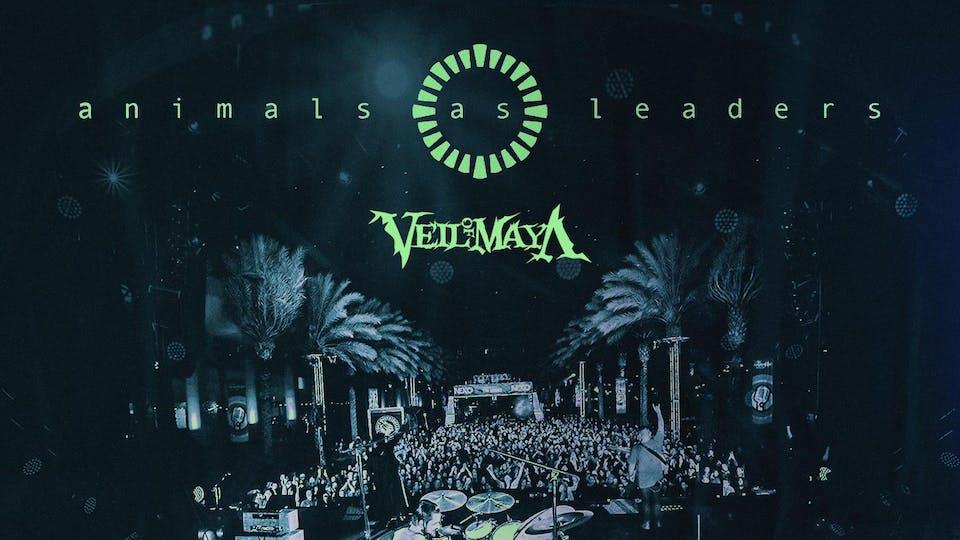 Animals As Leaders w/ Veil of Maya