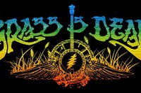 The Grass Is Dead - Bluegrass Tribute to the Grateful Dead
